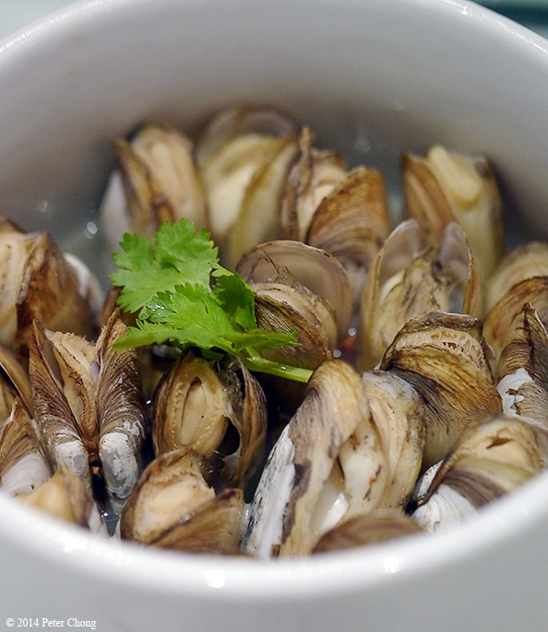 Thai-style Steamed Clams Recipes — Dishmaps